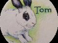 Tom-Bun-badil